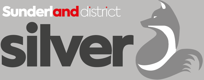 Sunderland District Silver             33